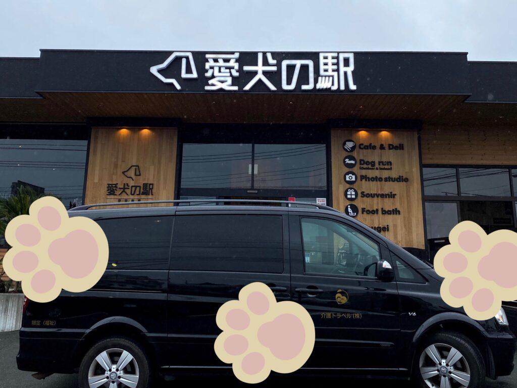 介護付き旅行サービス東京さんぽで行くペット同伴