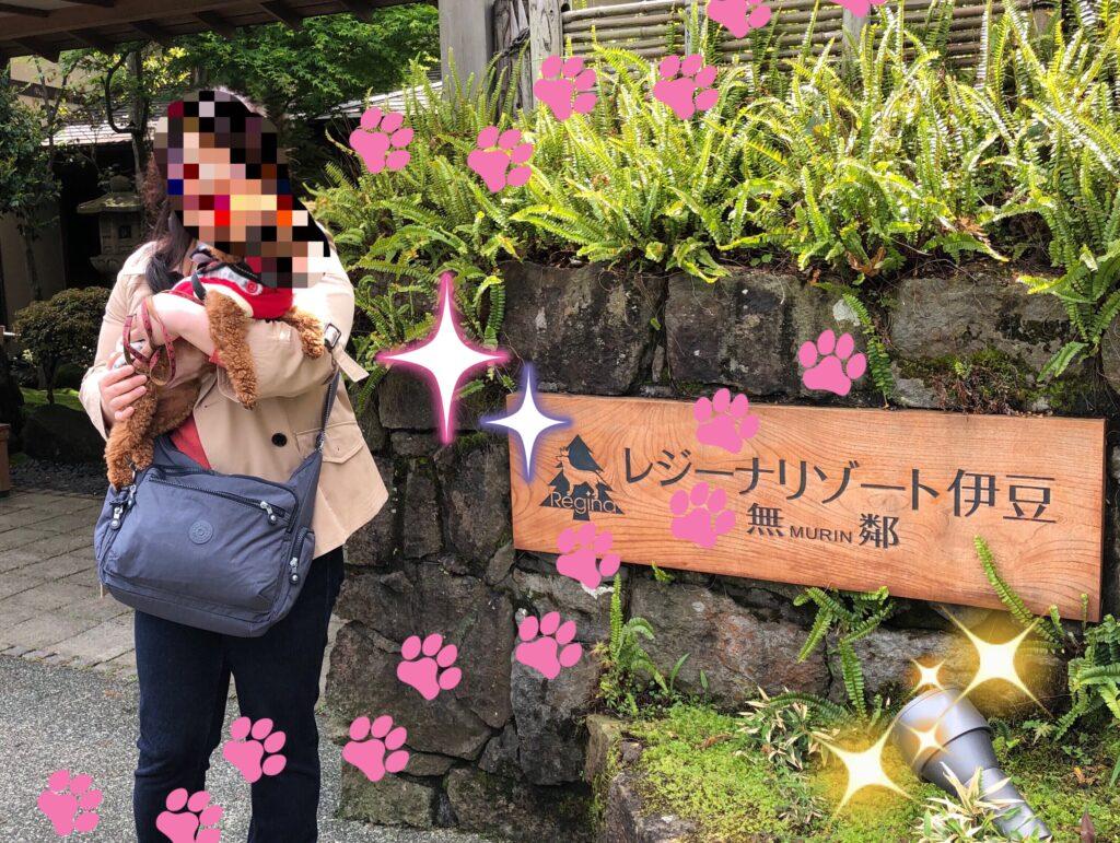 介護付き旅行サービス東京さんぽで行くレジーナリゾート伊豆
